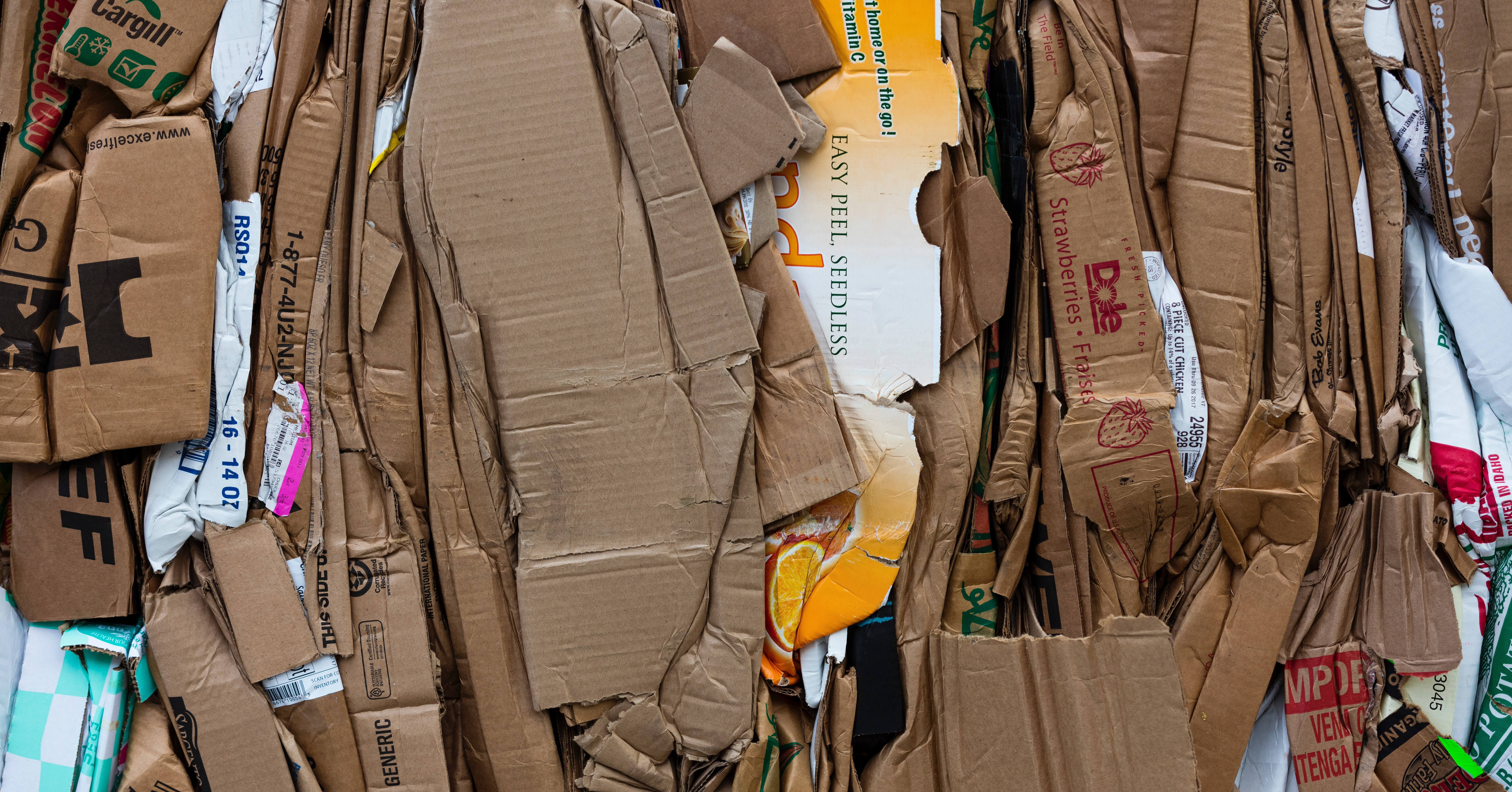 how much does waste disposal cost for business
